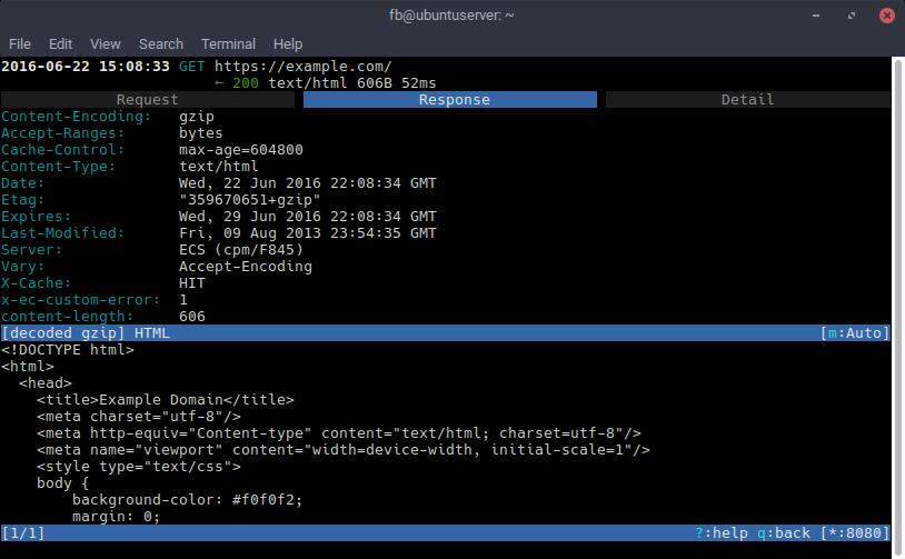 Using a CFSSL Certificate Authority to Intercept HTTPS